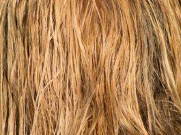 Maschera-per-capelli-secchi